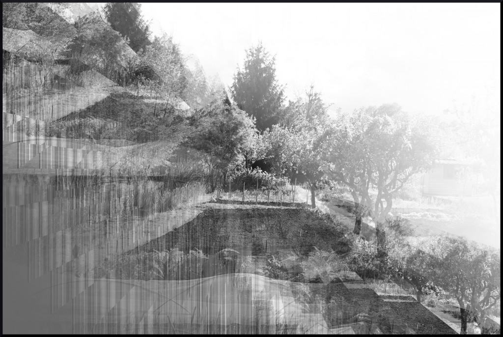 Illusion dans Photos illusion1